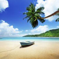 Comment organiser son voyage aux Seychelles ?