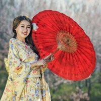 Partir à la découverte de la nature et de la culture japonaise