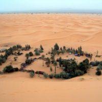 L'oasis du Tafilalet, un havre de paix en plein milieu du désert