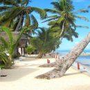 Des idées pour organiser un séjour unique sur l'île de Madagascar