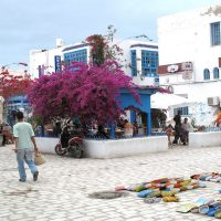 Les atouts touristiques de Djerba