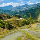 Des conseils pour visiter Vietnam