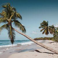 6 conseils pour préparer votre voyage à la Martinique